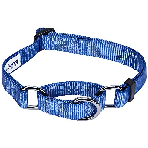 Blueberry Pet 19 Colors Safety Training Martingale Dog Collar, Marina Blue, Small, Heavy Duty Nylon Adjustable Collars for Dogs