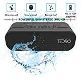 TEDRO, Waterproof Portable Bluetooth Speaker, 20w True Stereo L/R Speaker, Shockproof with Built-in 4400mAh Power Bank and FM Radio, Micro SD Card, AUX, Deluxe Presentation Box, NX-4017F Black