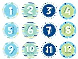 Pearhead First Year Belly Stickers, Blue