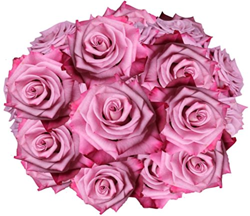 Flowers for delivery on Amazon Bouquet of 50 LAVENDER PURPLE Fresh Roses Delivered with Free Flower Food Packet.