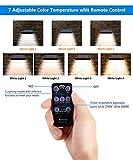 MEWAY Solar Gutter Lights 48 LED Motion Sensor