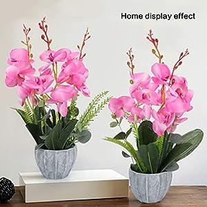 YOBANSA Big Size Orchid Bonsai Artificial Flowers with Imitation Porcelain Flower Pots Phalaenopsis Fake Flowers Arrangements for Home Decoration (Rose Red) 3