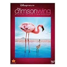 Crimson Wing: The Mystery of the Flamingo (2012)