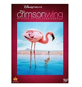 Crimson Wing: The Mystery of the Flamingo