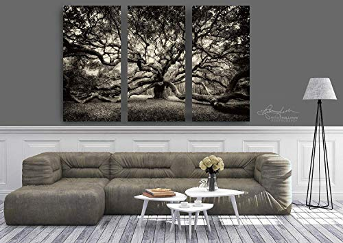 Angel Oak Tree, Ready-to-Hang Fine Art Canvas Gallery Wrapped Triptych, Extra Large Museum Quality 3-Panel Wall Photography, Charleston SC, Sepia Decor, 36x24 inches to 90x60 inches -