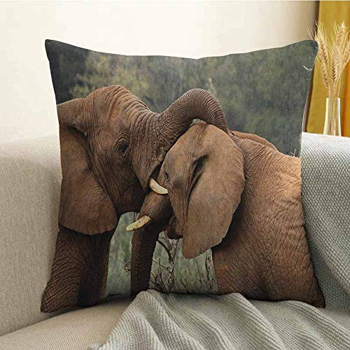 Safari Silky Pillowcase Two Wild Savannah Elephants Wrestling Cute Nature Icons South African Animals Photo Super Soft and Luxurious Pillowcase W20 x L20 Inch Brown Green