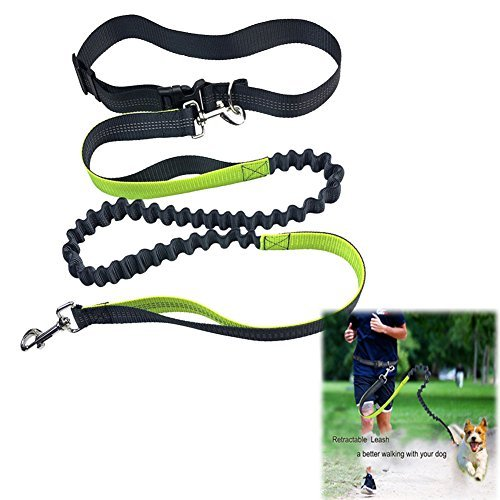 Retractable Hands Free Dog Leash,DULU 6 Foot Long Dual Reflective Bungee Leash for Running Walking Hiking with Adjustable Waist Belt(Fits for 27.6in up to 47in Waist)