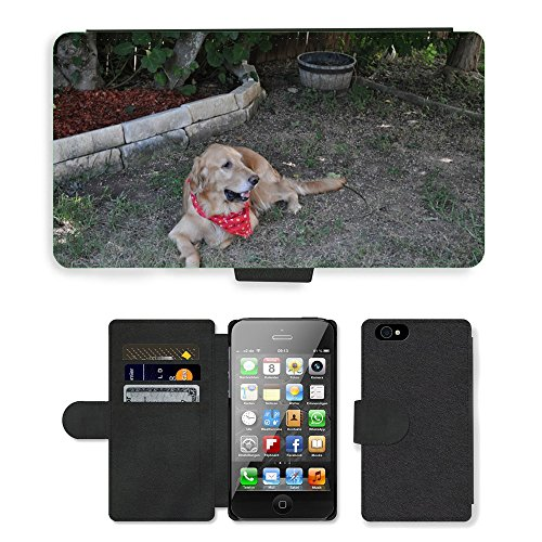 Just Phone Cases PU Leather Flip Custodia Protettiva Case Cover per // M00127633 Chien Golden Retriever chiot Pet // Apple iPhone 4 4S 4G