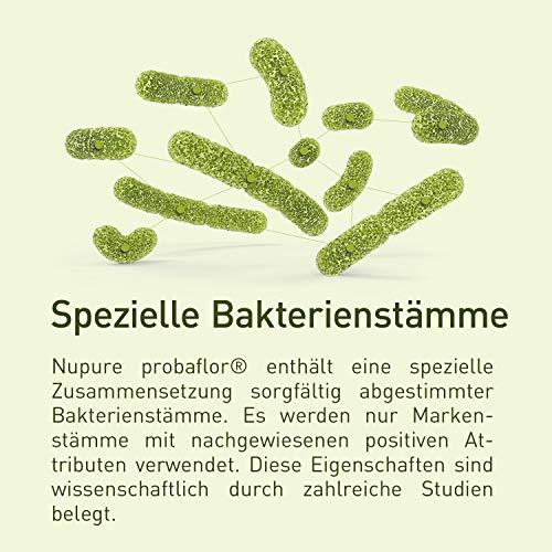 Nupure Probaflor Kulturen Komplex - 2 Monatsvorrat - 60 magensaftresistente Kapseln mit Milchsäurebakterien, Bifidobakterien plus Inulin