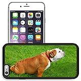 english bulldog iphone 6 case - Liili Premium Apple iPhone 6 plus iPhone 6S plus Aluminum Snap Case funny pose of english bulldog sitting or lying on the grass IMAGE ID 18620103