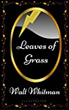 Image of Leaves of Grass: By Walt Whitman - Illustrated