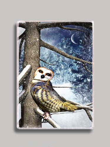 Barnyard Owl Refrigerator Magnet (Barnyard Fridge Magnet)