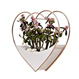 Hanging Wall Vase Planter,Heart Shape Geometric Wall Hanging Decor Succulent Planter Flower Pot Indoor Wall Planter,Rose Gold and White