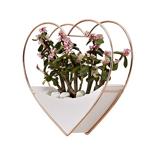 Hanging Wall Vase Planter,Heart Shape Geometric Wall Hanging Decor Succulent Planter Flower Pot Indoor Wall Planter,Rose Gold and White by cheerfullus