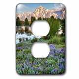 3dRose Danita Delimont - Mountains - USA, Wyoming. Grand Teton National Park, flowers, mountains - Light Switch Covers - 2 plug outlet cover (lsp_279811_6)