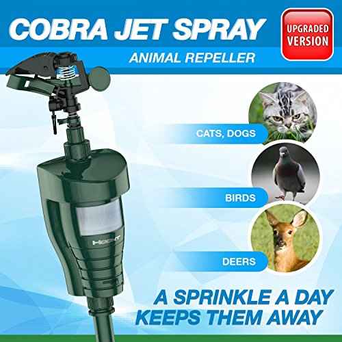 Powerful Outdoor Water Jet Blaster Animal Pest Repeller – Motion Activated