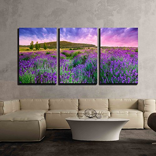 Sunset over a Summer Lavender Field in Tihany Hungary This Photo Make Hdr Shot x3 Panels