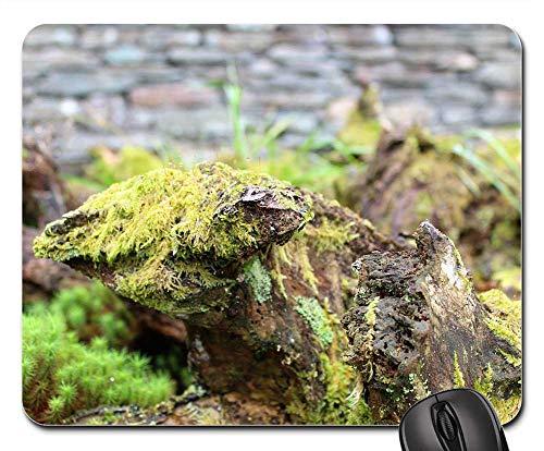 Mouse Pad - Stump Bark Wood Moss Lichen Fern Wall Stone
