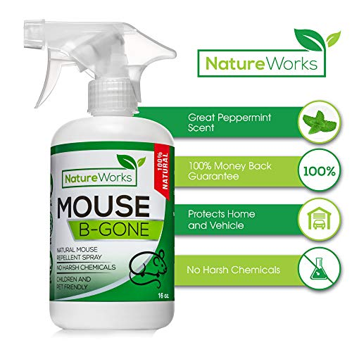 Mouse-B-Gone I Peppermint Oil Mouse Repellent Spray I Rodent Deterrent I Vehicle Protection- Car RV & Boat and House - Minty Smell