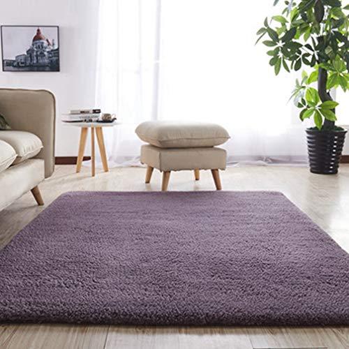 Solid Square Area Rugs Soft Shag Living Room Children Bedroom Rug Anti-Slip Plush Carpets Home Decor Modern Indoor Outdoor Runners Nursery Plum 3' X ()