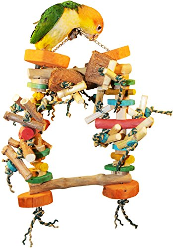 The ULTIMATE Chew & Swing Delight Bird Toy – Super Zoo Tradeshow 's Best Bird Product (2010/2011) (Medium Bird Size (15