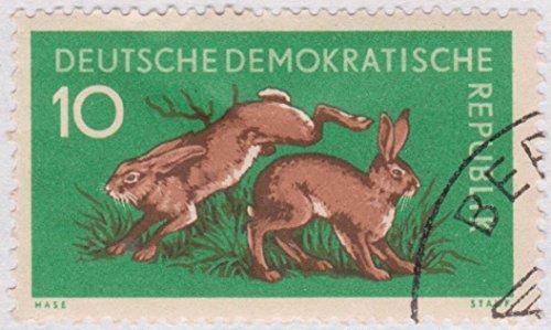 (1959 German Democratic Republic DDR Forest Animals Postage Stamp)