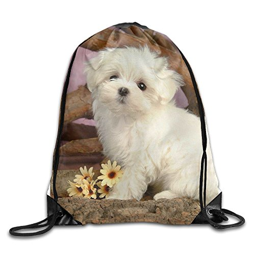 GGFUIS9 3D Print Maltese Puppy Shoulders Bag Women Fashion Backpack Girls Beam Port Drawstring Travel Shoes Dust Storage Bags by Unknown
