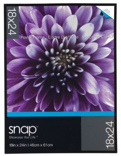 Snap U-Channel Poster Frame, 18 by 24-Inch, Black by Snap