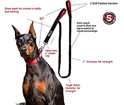 Dog Leash 2 Handles - Extra Long 8-ft Lead - Heavy Duty - Double Handle for Greater Control Safety Training - Perfect for Large Dog or Medium Dog - Dual Padded Handles - Protect Dog in Traffic