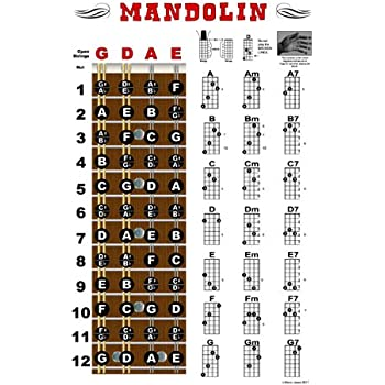 Amazon Mandolin Fretboard And Chord Chart Instructional Poster