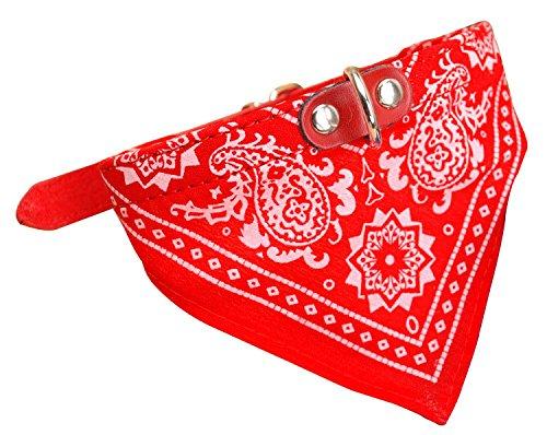 AGIA TEX Hundehalsband mit Hals-Tuch verstellbar Badana für Hund Katze Farbe Rot Größe S = 39cm lang