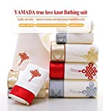 "Amada department store Luxury 3-Piece Towel Set with Giftbox, 100% Cotton, 1 Bath Towel (55""x28""), 2 Hand Towels (30""x14""), Machine Washable, Super Soft and Highly Absorbent (Silver)"