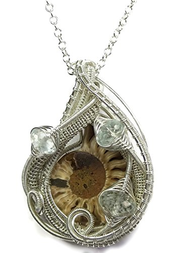 Ammonite Fossil Wire-Wrapped Pendant in Tarnish-Resistant Sterling Silver with Aquamarine and Chain - Ammonite Fossil Sterling Silver Pendant