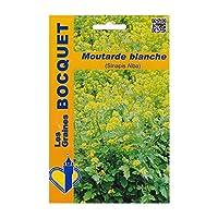 Les Graines Bocquet - Graines De Moutarde Blanche (Sinapis Alba) - Graines Potagères À Semer - Sachet De 100Grammes