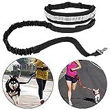 Running Dog Pet Leash Hands Free Walking Waist Belt Adjustable Reflective with Bag (Black)