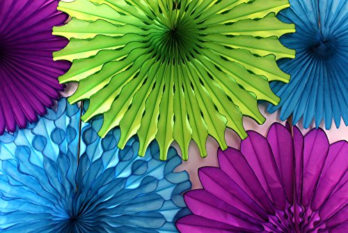 Tissue Paper Fan Collection - 5 Large Assorted Fans (Peacock - Lime, Turquoise, Purple, 18 and 13 inches) -