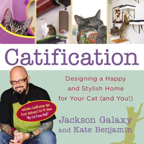 Catification Designing a Happy and Stylish Home for Your Cat (and You)