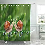 Emvency Shower Curtain Set Waterproof Adjustable Polyester Fabric Green Animal Love Making Snails Couple on Dewy Grass Metaphor Funny Slug Sex 72 x 78 Inches Set with Hooks for Bathroom