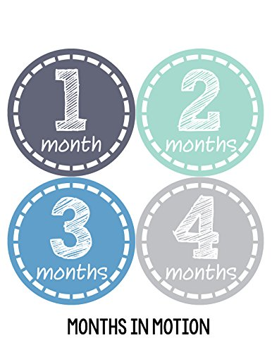 Months in Motion 115 Monthly Baby Stickers Baby Boy Month 1-12 Milestone Sticker
