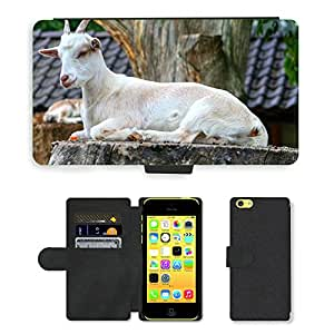 Super Stella Cell Phone Card Slot PU Leather Wallet Case // M00146574 Goat Animal Horns Goats Zoo Wild // Apple iPhone 5C