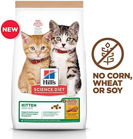 Hill s Science Diet Dry Kitten Food, No Corn, Wheat or Soy Dry Cat Food, Chicken Recipe