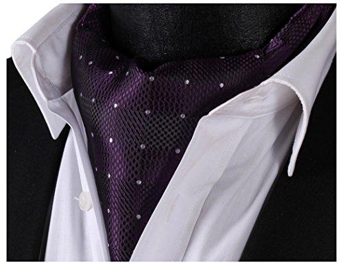 HISDERN Men's Plaid Jacquard Woven Self Cravat Tie Ascot Purple/Violet ()