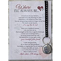 Where I'll Always Be Pet Loss Sentiment with Keychain - Heartfelt Pet Sympathy/Pet Memorial Gift (Cat)