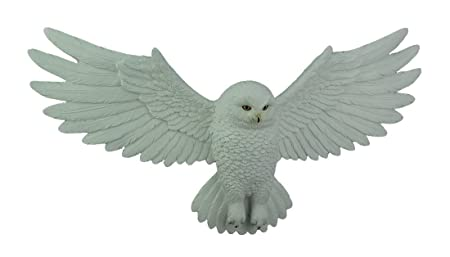 Dwk White Owl With Wings Spread Open Wall Hanging Plaque Amazonco