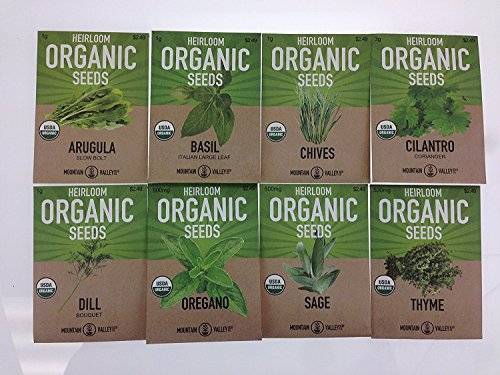 organic heirloom herb seeds - 3
