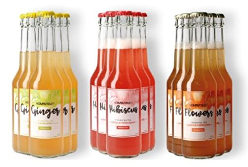 KOMBUTXA BEBIDA TE KOMBUCHA ORGANICA -24 botellas de 275ml(8 de Jengibre 8 de