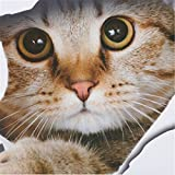 TraveT Vivid 3D Cat Bedroom Bathroom wall stickers personality home decor
