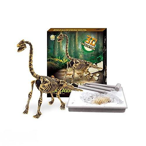 Dinosaur Excavations Kits - Unearth 3D Dinosaur Bones - Brachiosaurus