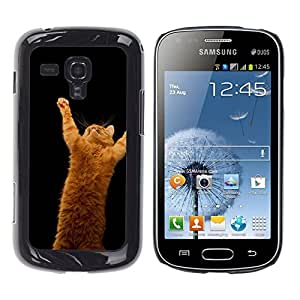iKiki Tech / Estuche rígido - Gato anaranjado - Samsung Galaxy S Duos S7562