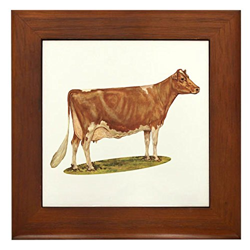 CafePress - Ideal Guernsey Cow - Framed Tile, Decorative Tile Wall Hanging